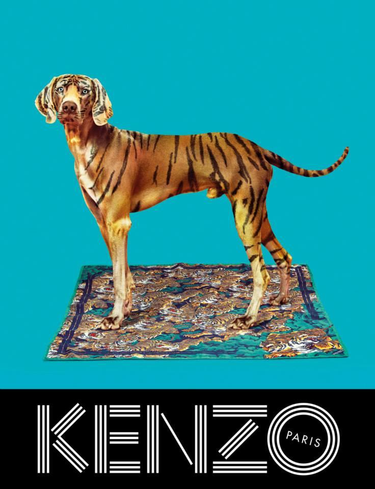kenzo-02-fall-13-14