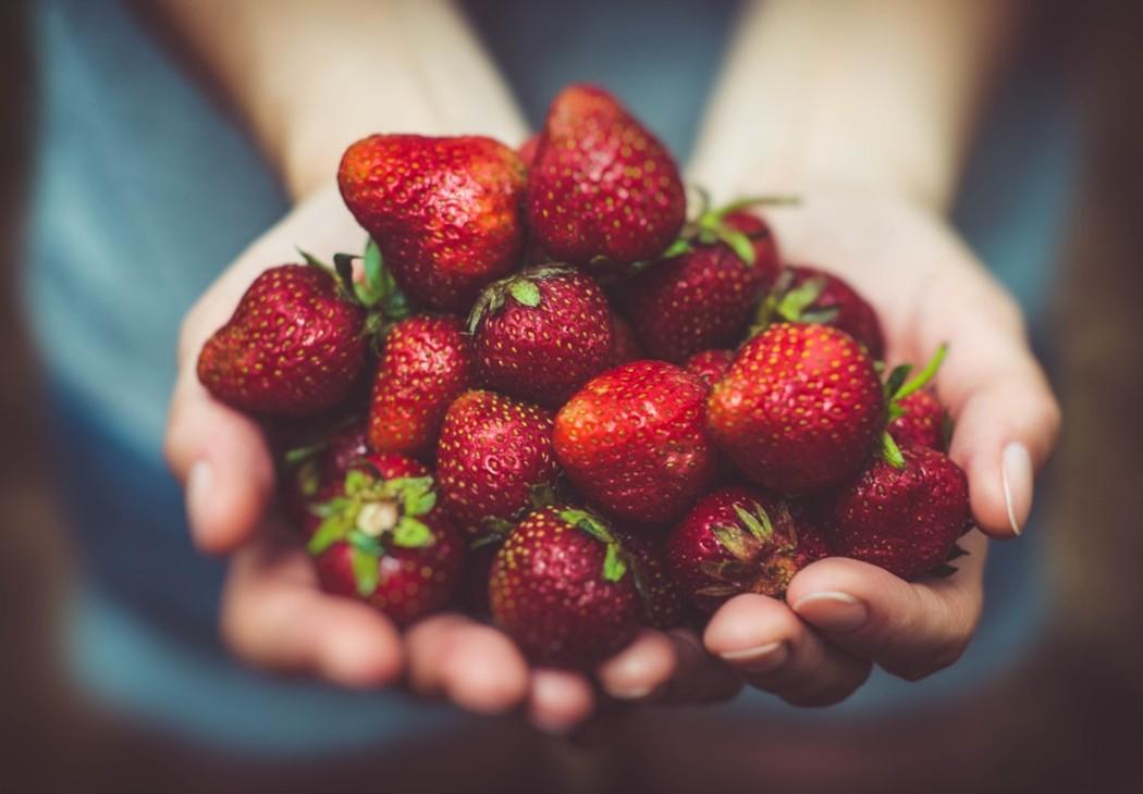 estampado-de-frutas-fresas-tendencias-primavera-verano-2019-gucci